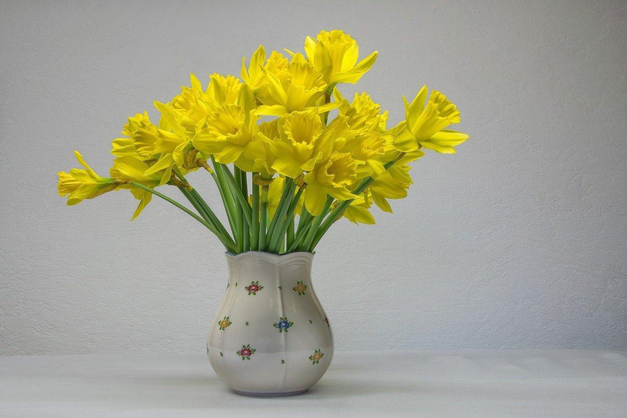 Sophrologie re flexologie de printemps